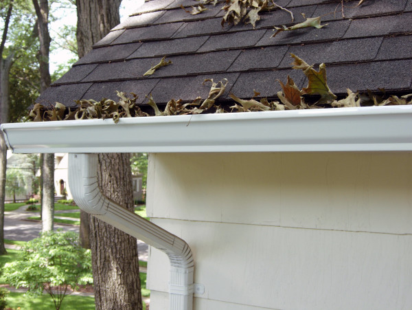 Do I Need To Clean My Gutters