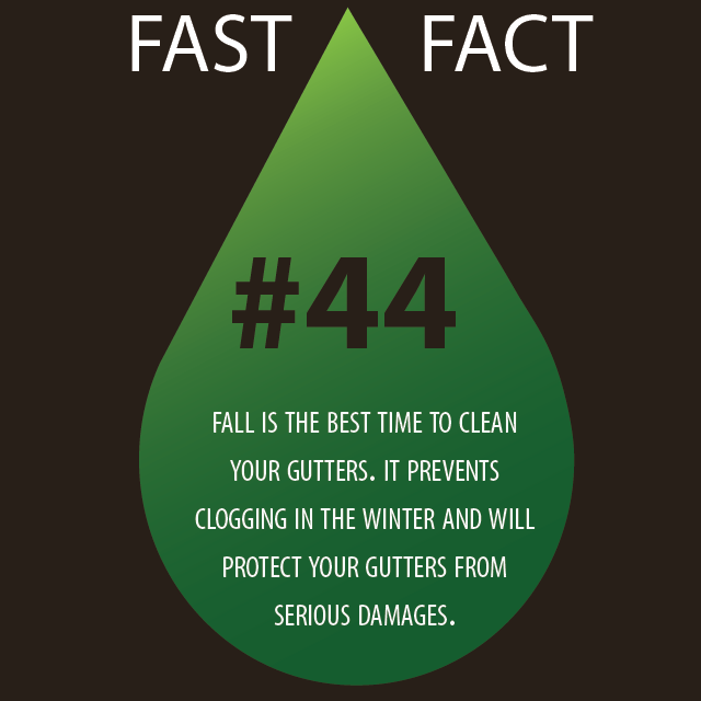 Clean Gutters This Fall