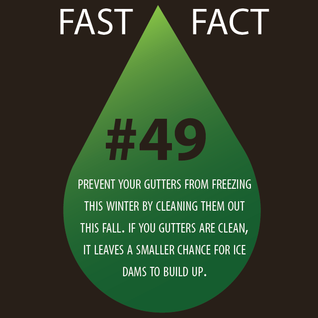 fastfact#49
