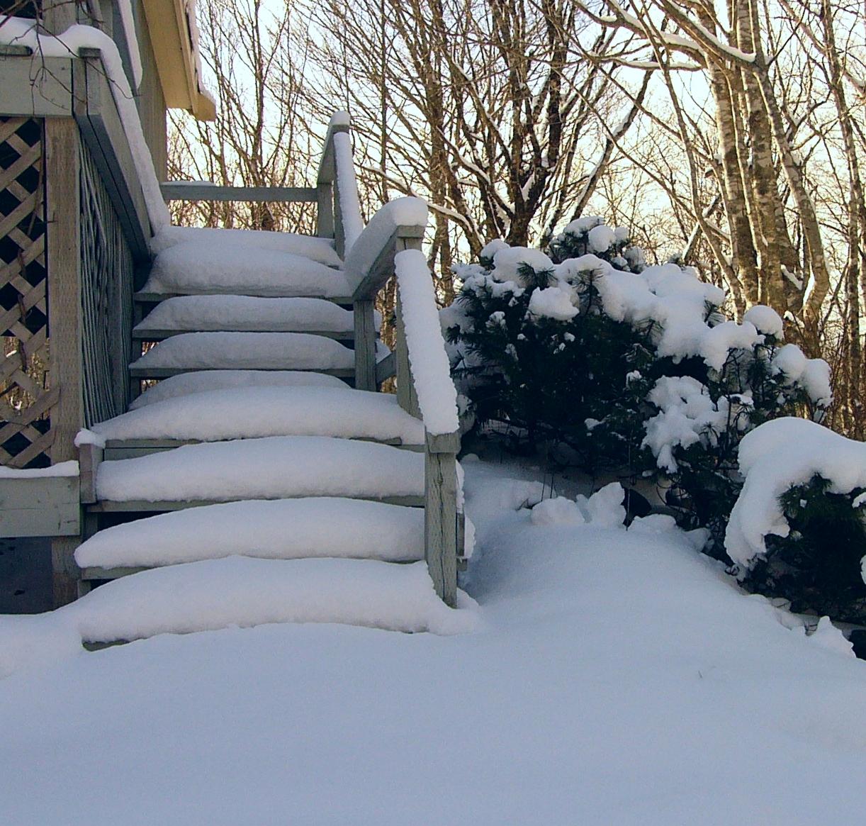 Salt & Snow Removal