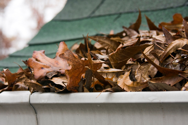 Damages That A Gutter System Prevents
