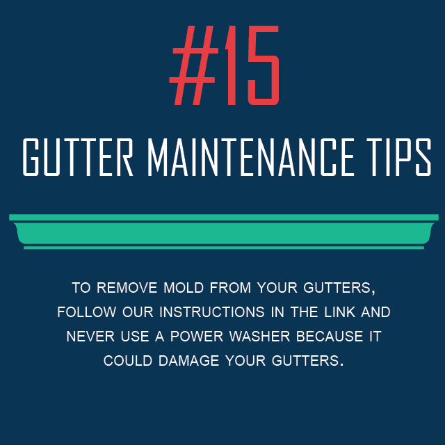 Gutter Maintenance Tips #15 - Removing Mold From Gutters