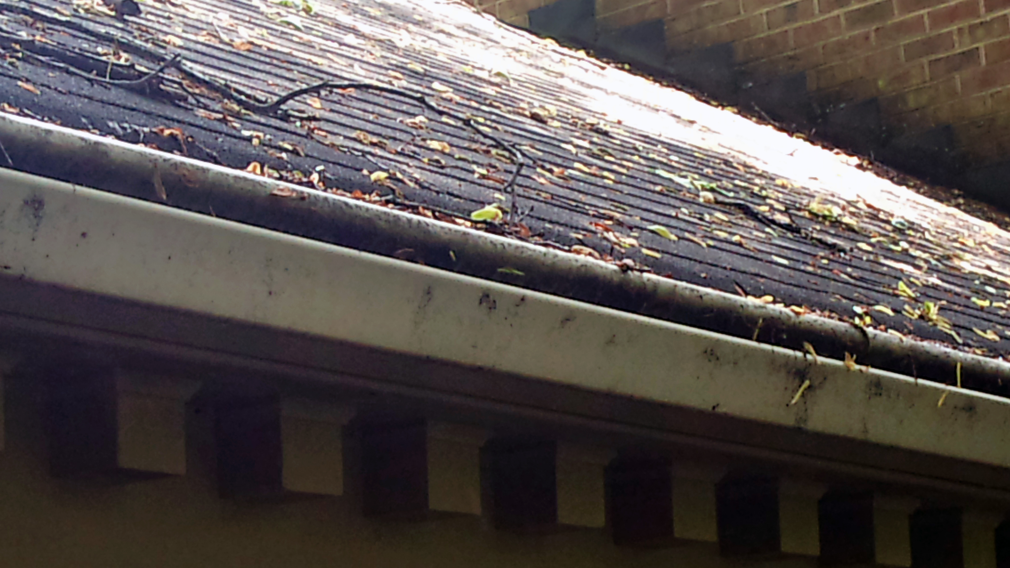 Removing Mildew From Gutters