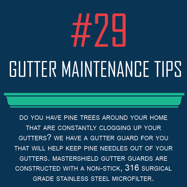guttermaintenancetips#29